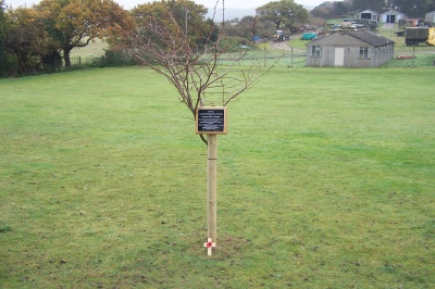 Poppy Cross laid at tree for Jean Brackenbury and Tec McMullan at Muckleborough, Weybourne